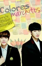 Colores Marchitos || ChanBaek by MitcheKiller117