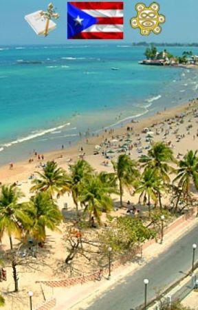 Puerto Rico Todo Resumido Diccionario Boricua Tesoropr