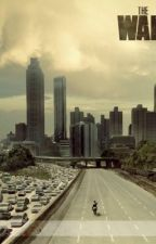 Walking Dead One-shots (Character X Reader) by english-love-affair