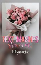 Text Imagines{Shawn.M} by babymendez