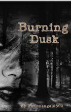 Burning Dusk by fallenangel2809