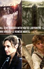 I Will Stay Forever With You / the Maze Runner - Newt.  EN RÉÉCRITURE by AnnabethEverdeen002