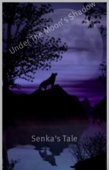 Under The Moon's Shadow: Night's Tale (On Hold)