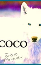 Coco by Simiro