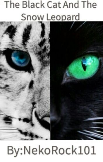 The Black Cat And Snow Leopard