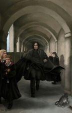 Severus Snape Hermine Granger by klaranea