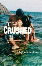 The Crushed Bad Boy by Laiqs_Jada