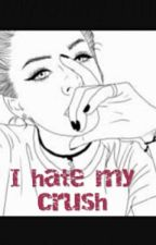 I Hate my Crush by Netflixxlife