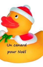 Un canard pour Noël by mywritings65