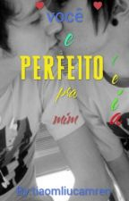 Voce E Perfeito Pra Mim by tiaomliucamren