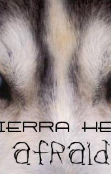 Sierra Heil