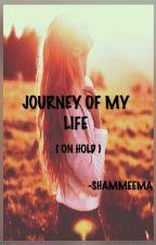 Journey Of My Life by shammeema