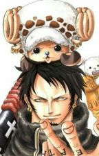 Aussi Froide Que Trafalgar Law by SkyWhite283