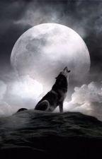Uivando pra Lua by Lycanael