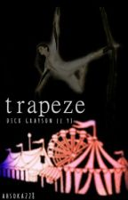 Trapeze // Young Justice by ahsoka228