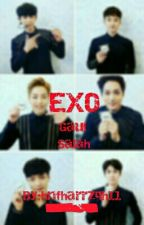 [LATE UPDATE] EXO GAUL SALAH by Villerwell