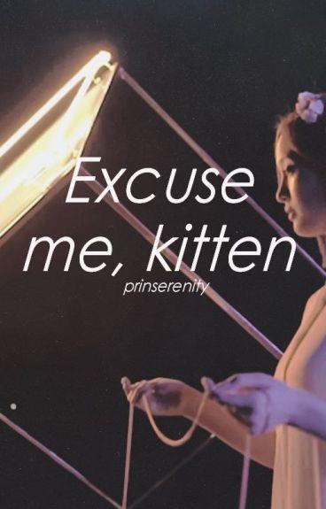 excuse me, kitten ; jikook