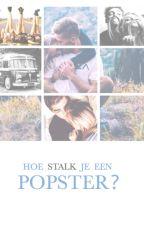 Hoe stalk je een popster? (Sunshine Heroes #2) by MissTop40