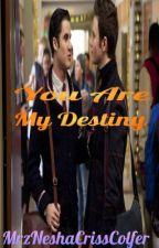You Are My Destiny (Klaine Fanfic) by Chalice-Lynne