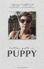 let's get a puppy || c.h. by bananekasztona_xx