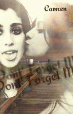 Don't Forget Me by camrenistrue16