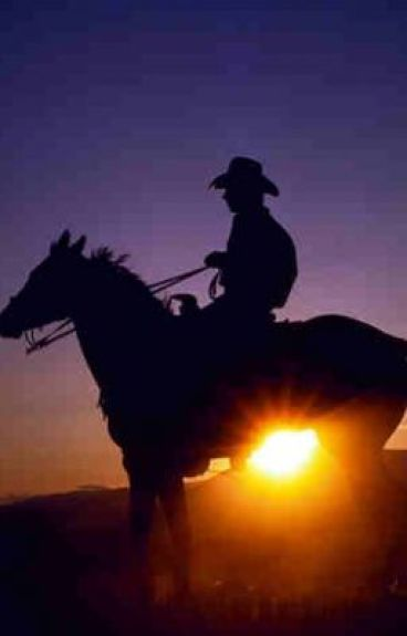 Cowboy! by AlexanderDavidRoscoe