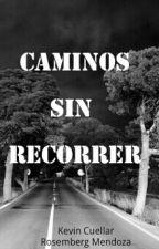 Caminos sin recorrer. by doslocosescritores