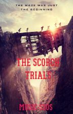 The Scorch Trials by Music-5sos