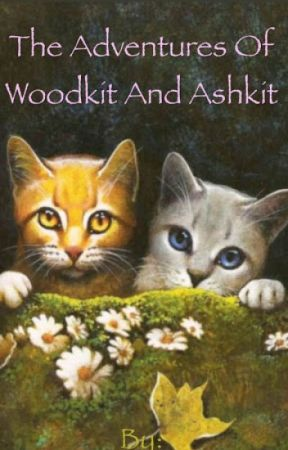 SandClan Short: The Adventures of Woodkit and Ashkit by sandclan