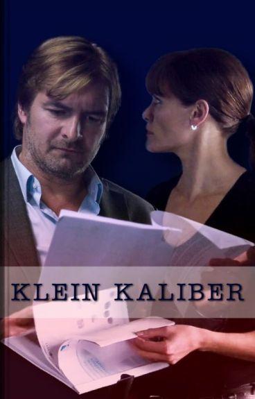 Klein Kaliber  -  Flikken Maastricht