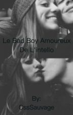 Le bad boy amoureux  de l'intello [INACHEVÉ] by CssSauvage
