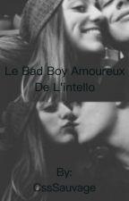 Le bad boy amoureux  de l'intello [INACHEVÉ] by CssSauvage