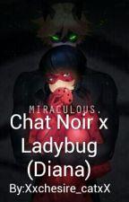Chat Noir X Ladybug (Diana) by Xxchesire_catxX