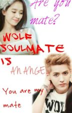 Wolf Soulmate Is an Angel by -sataeayam