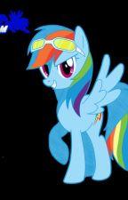 Sonic Riders: Rainbow Riders by Darkmaster0224