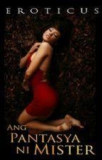Ang Pantasya ni Mister by Eroticus