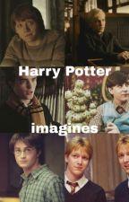 Harry Potter Imagines by potterimagine