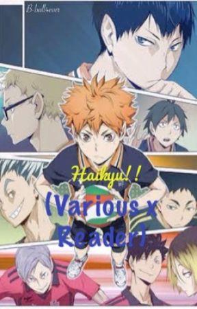 Haikyu!! (Various x Reader) by B-ball4ever