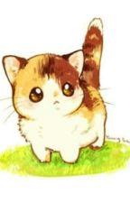 Oneshort (Xử Nữ - Ma Kết) Con Mèo Chân Ngắn Của Anh by AnnaDo2001