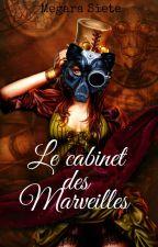 Le cabinet des marveilles by Megara7