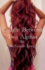 Caught Between Two Alphas by McKenzieBrookeLong