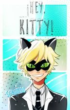 ¡Hey, kitty! (Ladynoir) by seikoo200