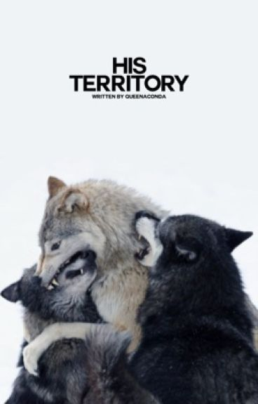 Territory ✔ manXboy