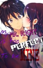 My Mr. Right Is Too Perfect To Be Mine (On Going) by Unsocialized
