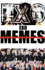 EXO MEMES by AnimeKpopLover_100