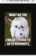 Harry Potter jokes by threshrue