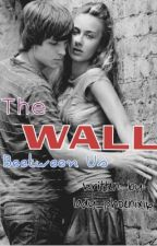 The Wall Between Us (Oneshot) FINISHED by Cristina_deLeon