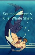 Soumako: Free! A Killer Whale Shark by Chaoticmajor