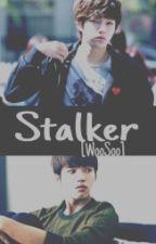 Stalker [WooSoo] by Sr_M2125