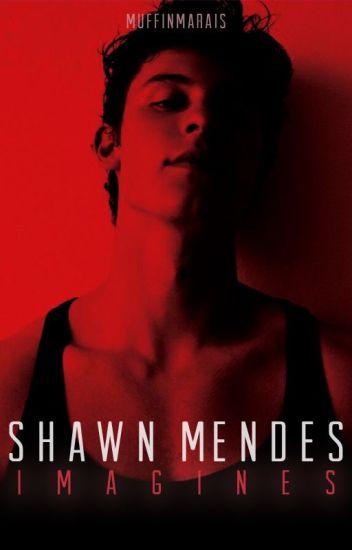 Shawn Mendes Imagines    #Wattys2017